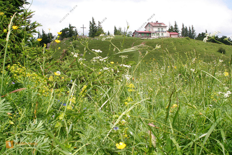 Julius Seitner Hütte