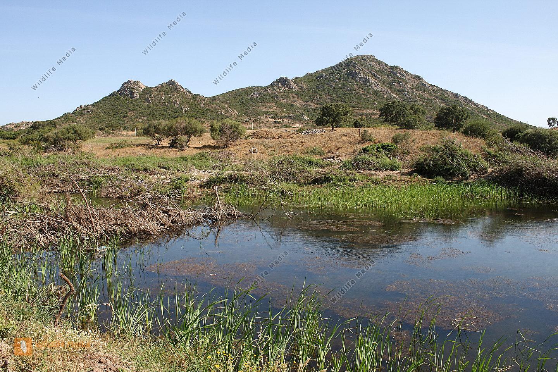 Sardinische Landschaft
