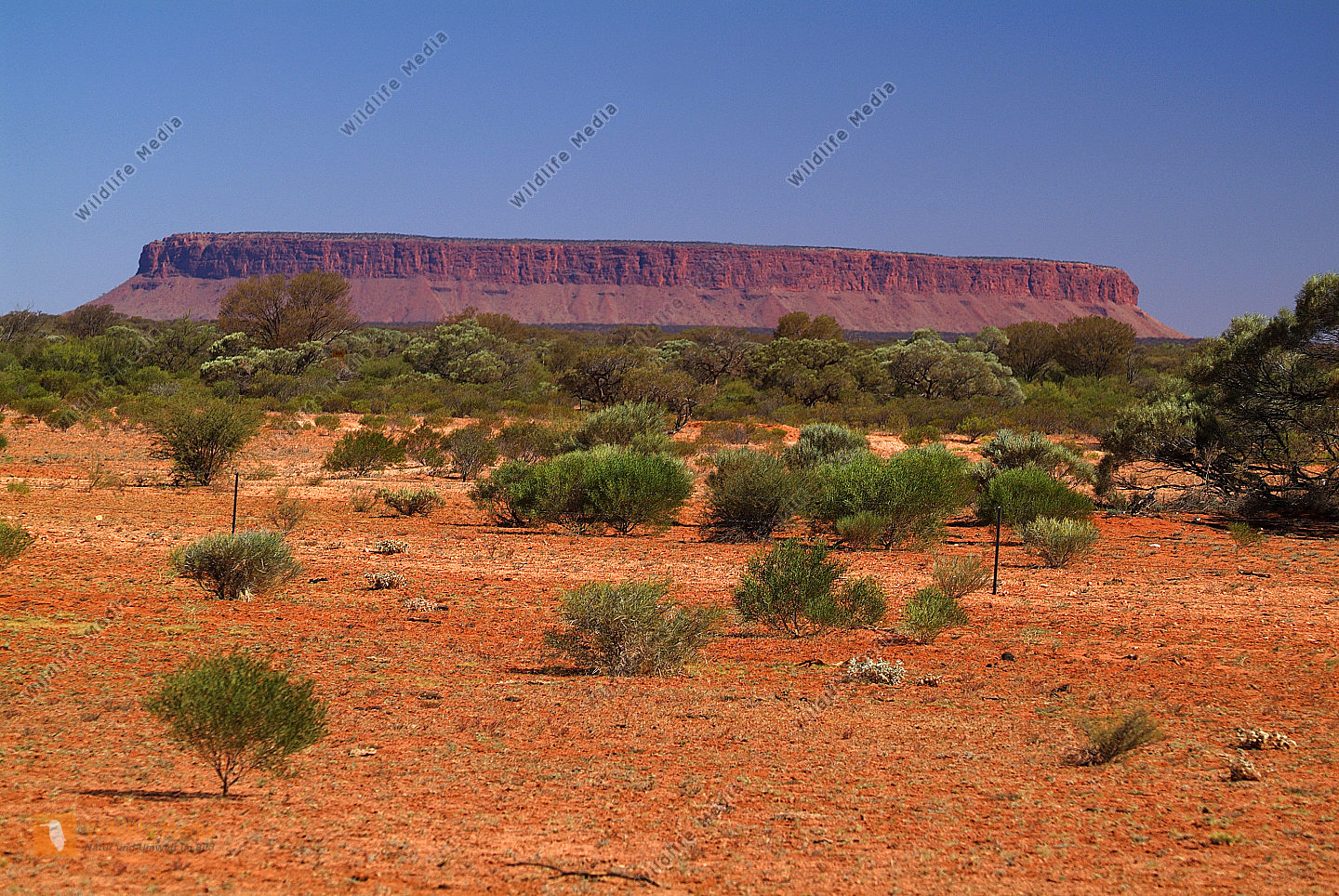 Australia, Mount Connor