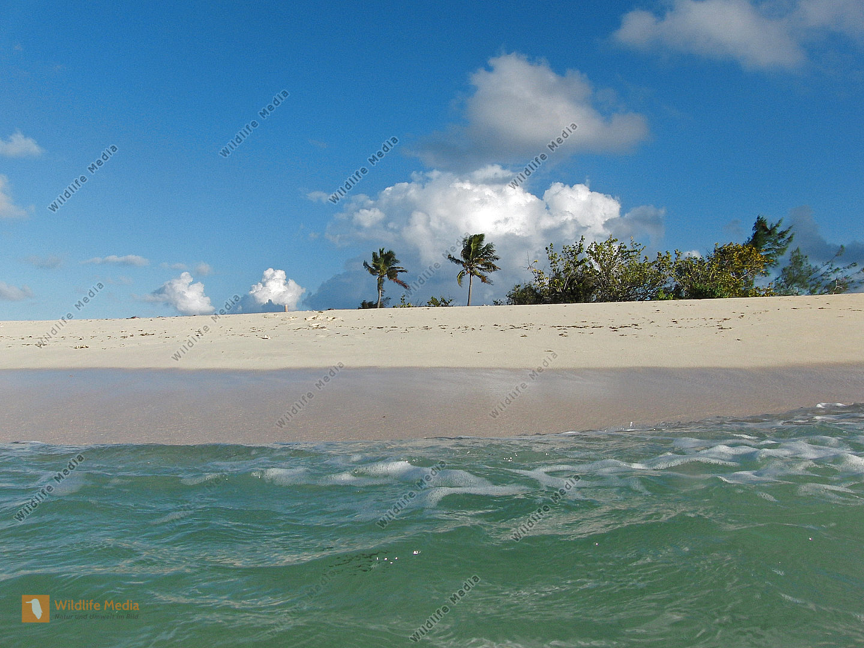 Karibische Insel