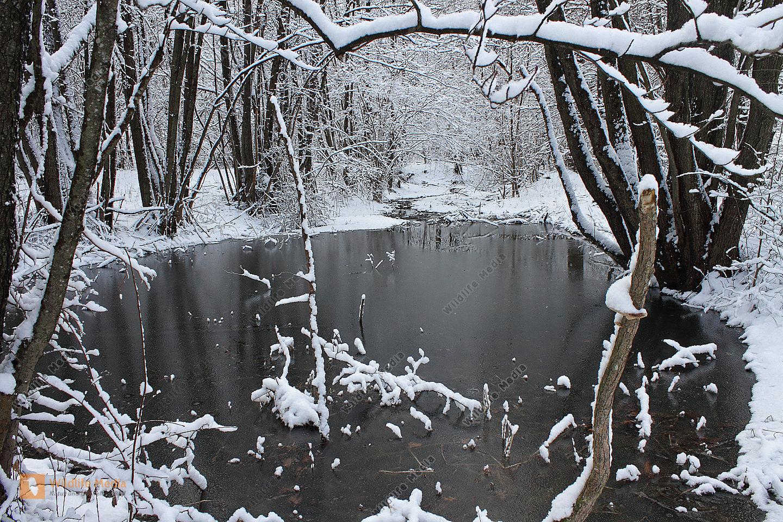 Bestellen teich im winter teich im winter bild for Goldfische im winter im teich