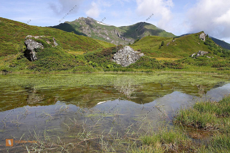 Alpine Gebirgslandschaft