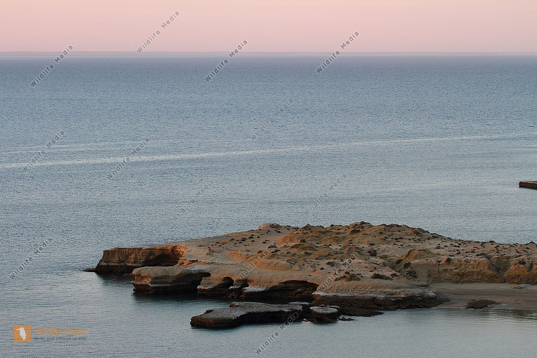 Felsenküste von Valdes