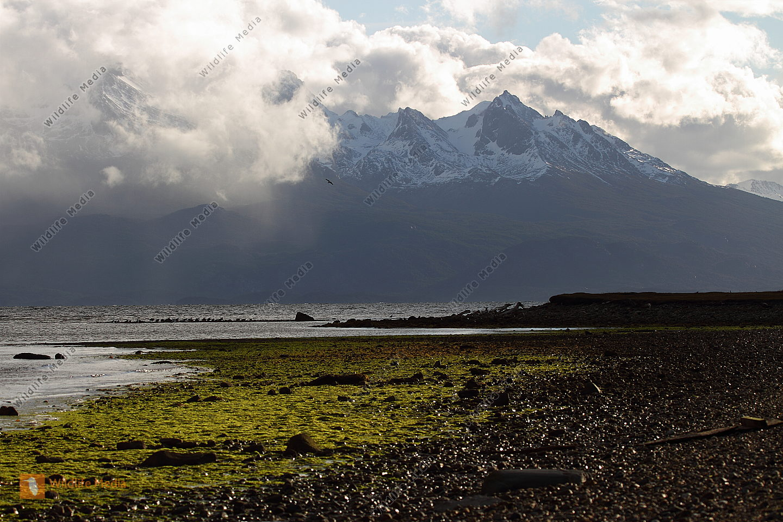 Küstenlandschaft von Ushuaia