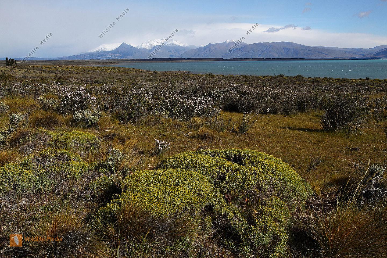 Patagonische Gebirgslandschaft