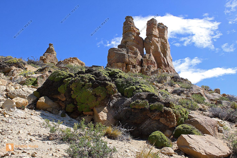 Sandstein Felsnadeln