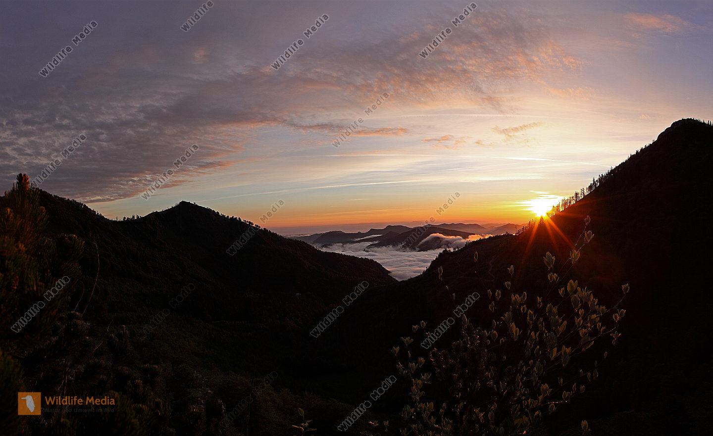 Almkogel-Panorama