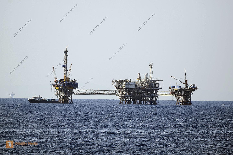 Umwelt, Ölgewinnung