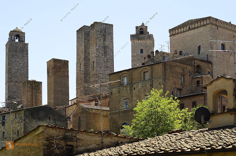 Italy, Unesco World Heritage San Gimignano