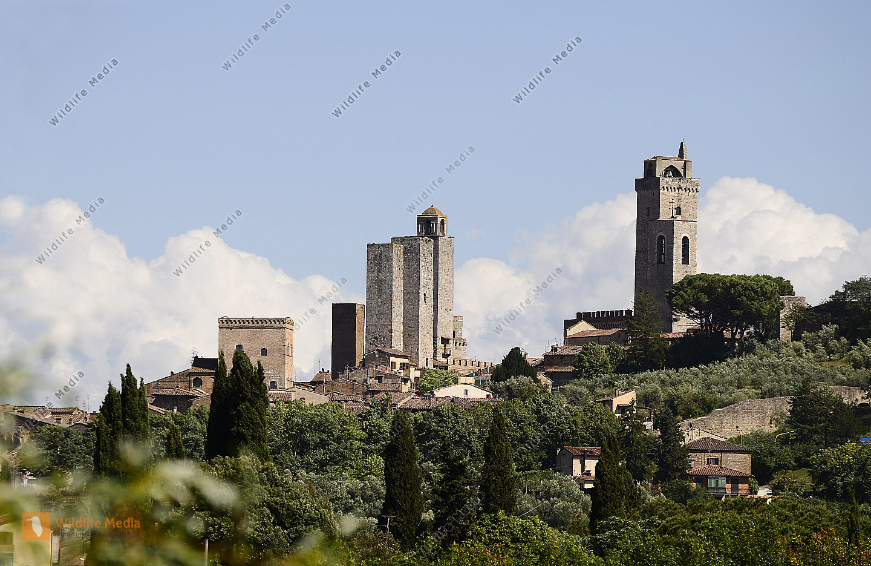 Italy, Unesco World Heritage site San Gimignano