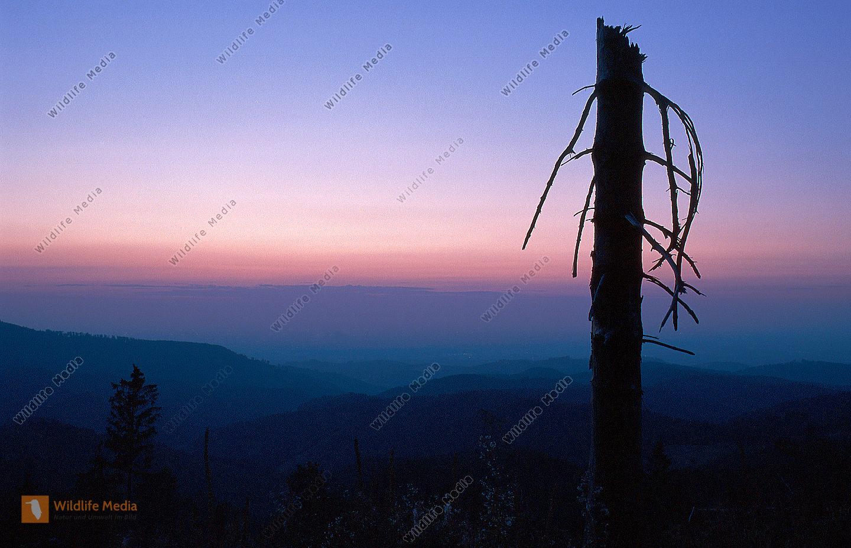 abend berge
