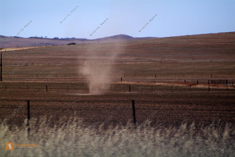 kleine Sandhose - Willy Willy - und Hitzeflimmern am Rande des Outback
