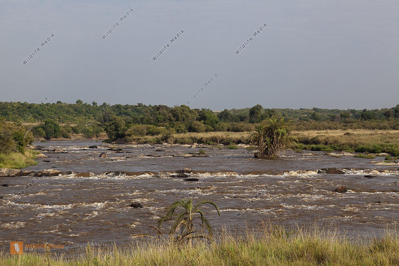 Der Mara River fliesst über viele im Flussbett liegende FelsbrockenMasai Mara Kenia