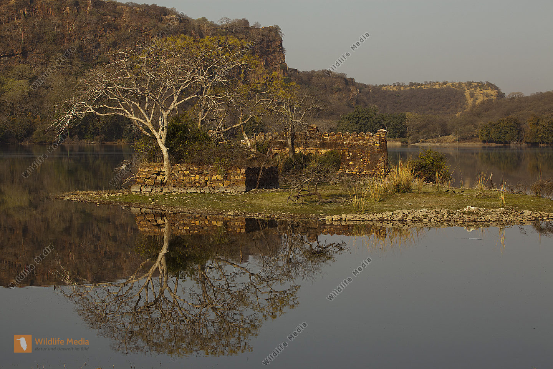 historisches Gebäude im Ranthambhore Nationalpark