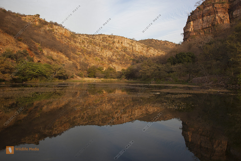 Landschaft im Ranthambhore Nationalpark