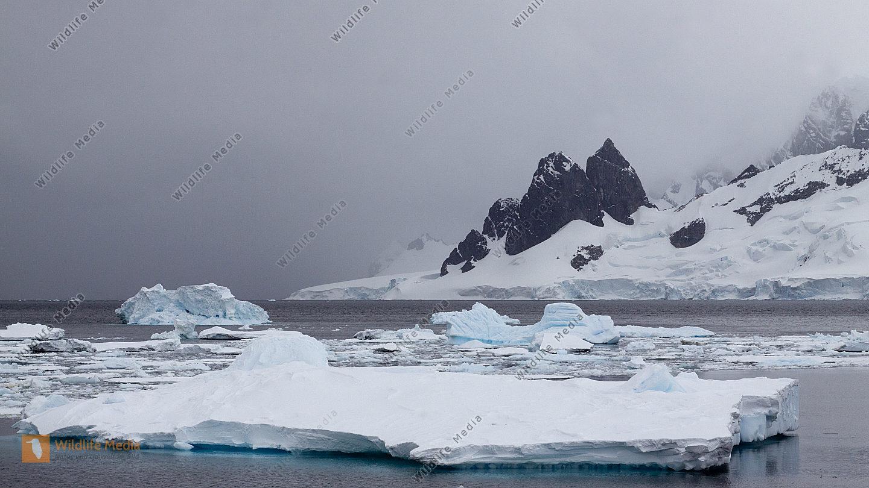 Gletscher und Treibeis