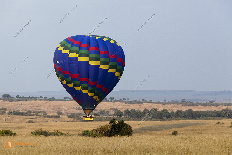 Ballon in der Masai Mara