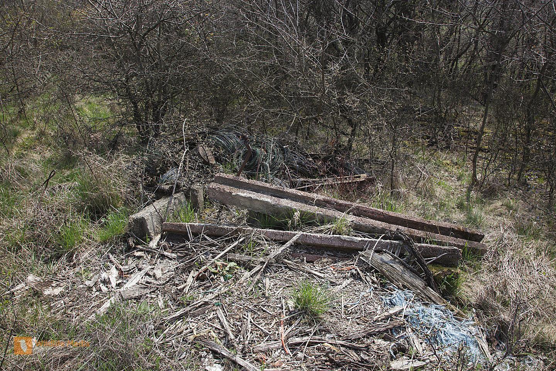 illegale Entsorgung in der Natur