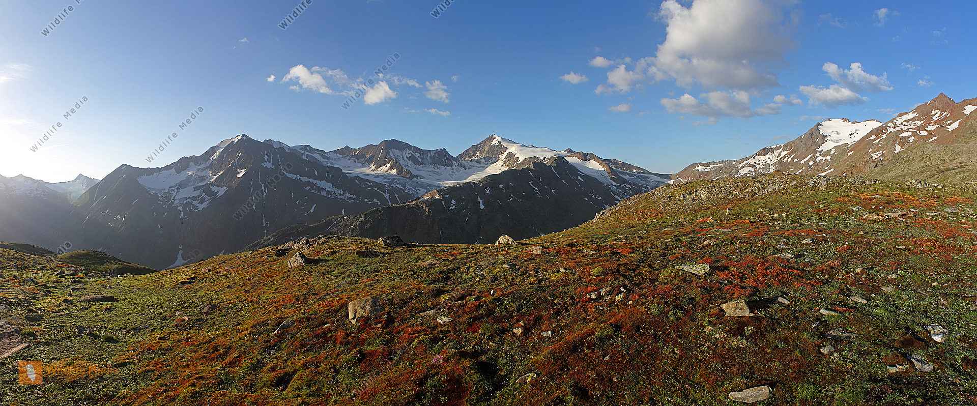 Similaun mit Ötztaler Alpen