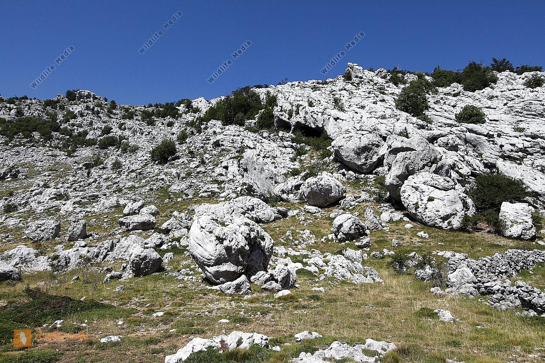 Karstlandschaft