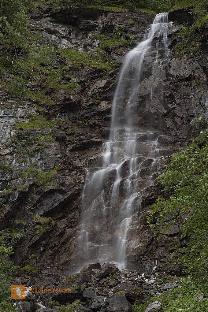 Schleier Wasserfall