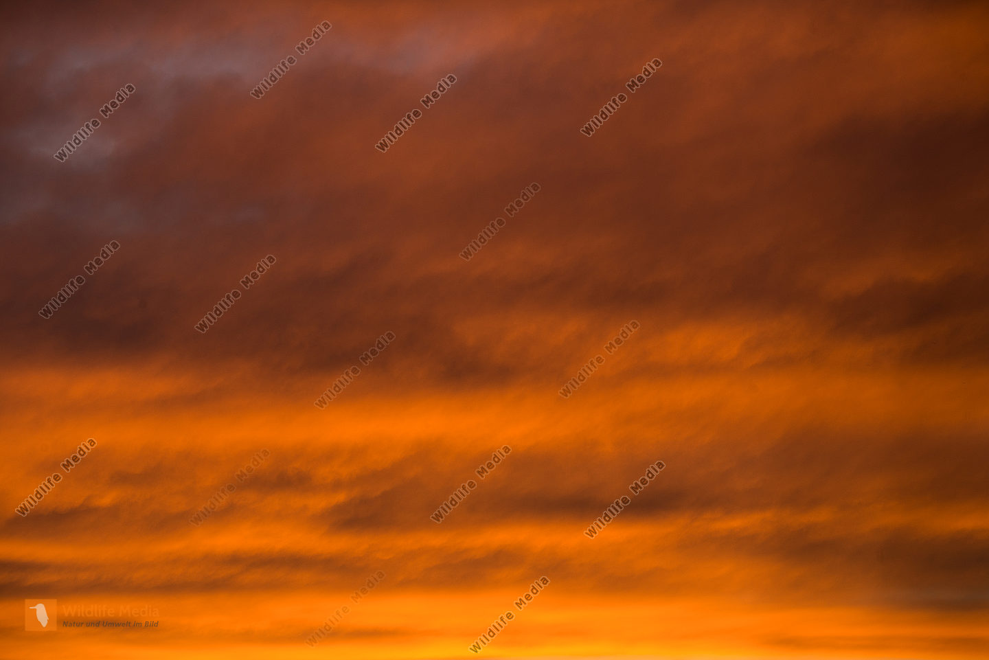 Wolkenstimmung am Abend / sunset clouds