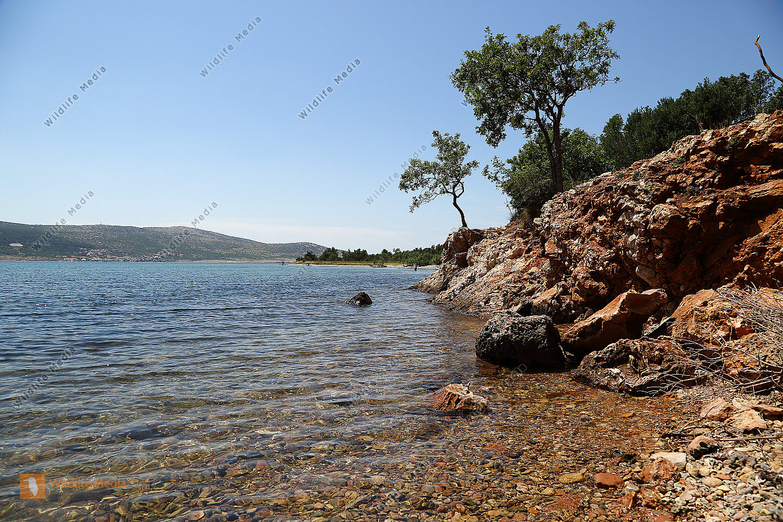 Felsküste Kroatien