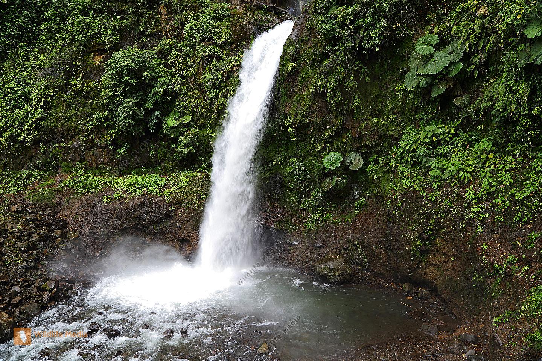 Tropischer Wasserfall