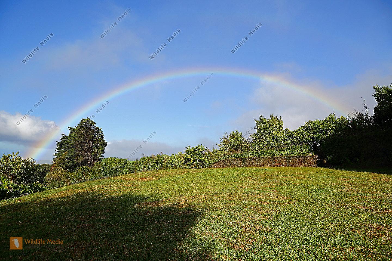 Regenbogen Monteverde