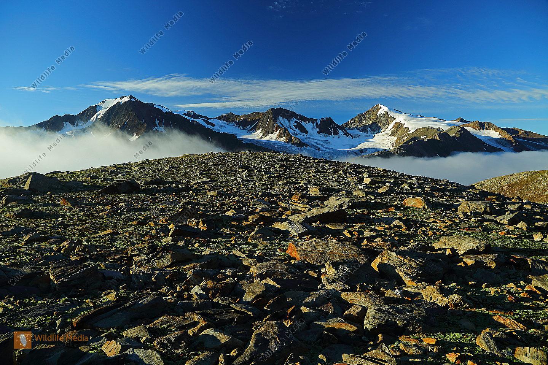 Similaun mit Nebelmeer