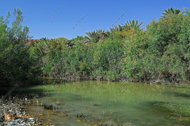 Flusslandschaft Marokko