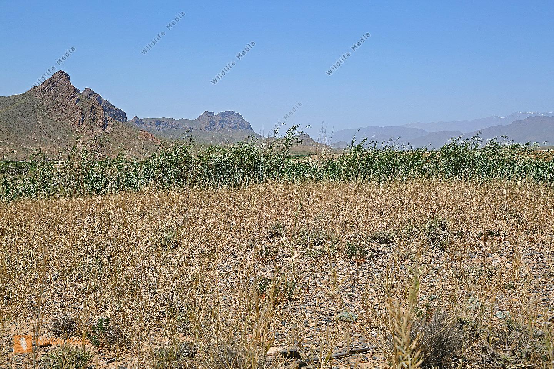 Gebirgslandschaft Marokko