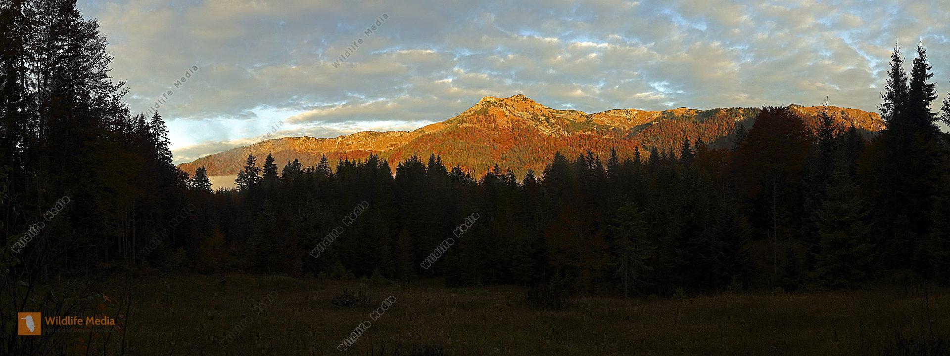 Dürrenstein Panorama