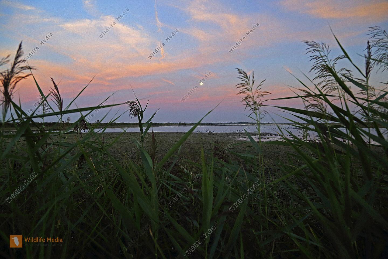 Seewinkel Sonnenuntergang