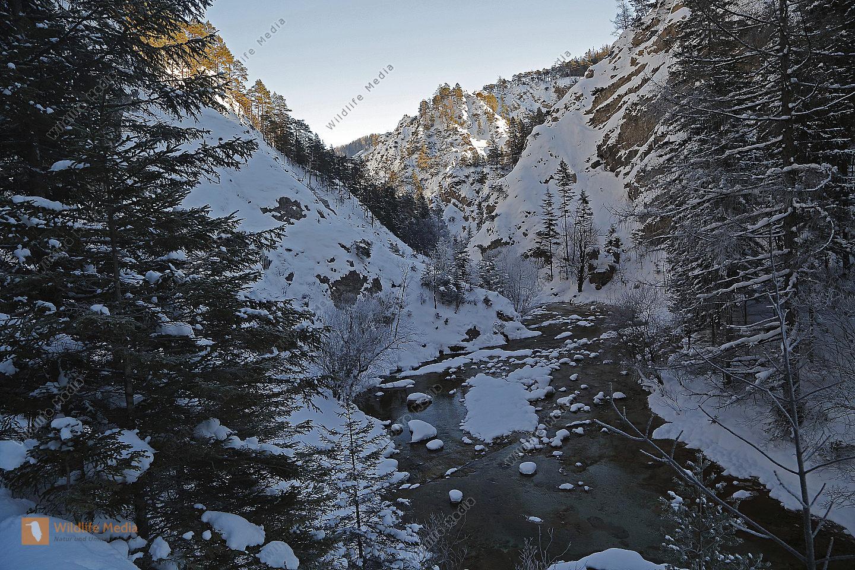 Felslandschaft Ötschergräben im Winter