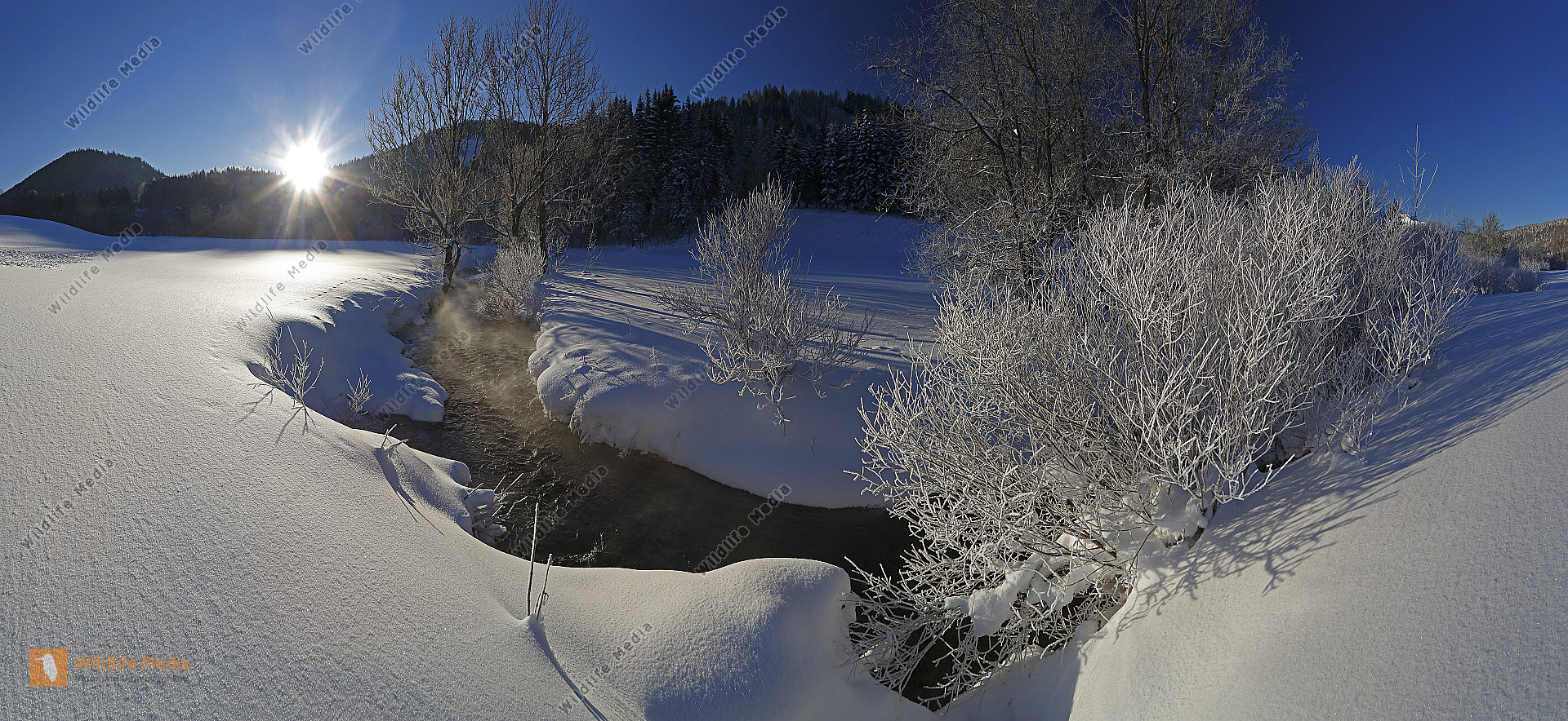 Waldbach im Winter Panorama