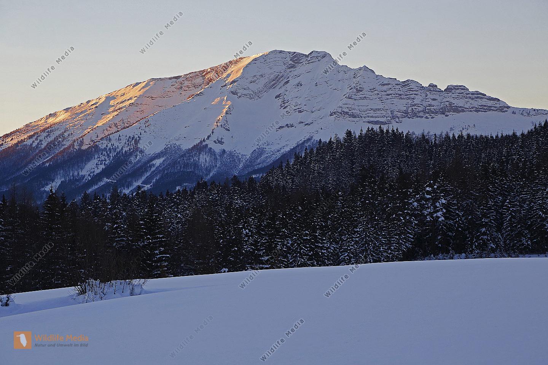 Ötscher im Winter