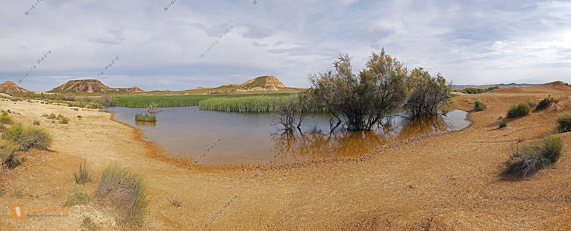 Halbwüste Oase Panorama
