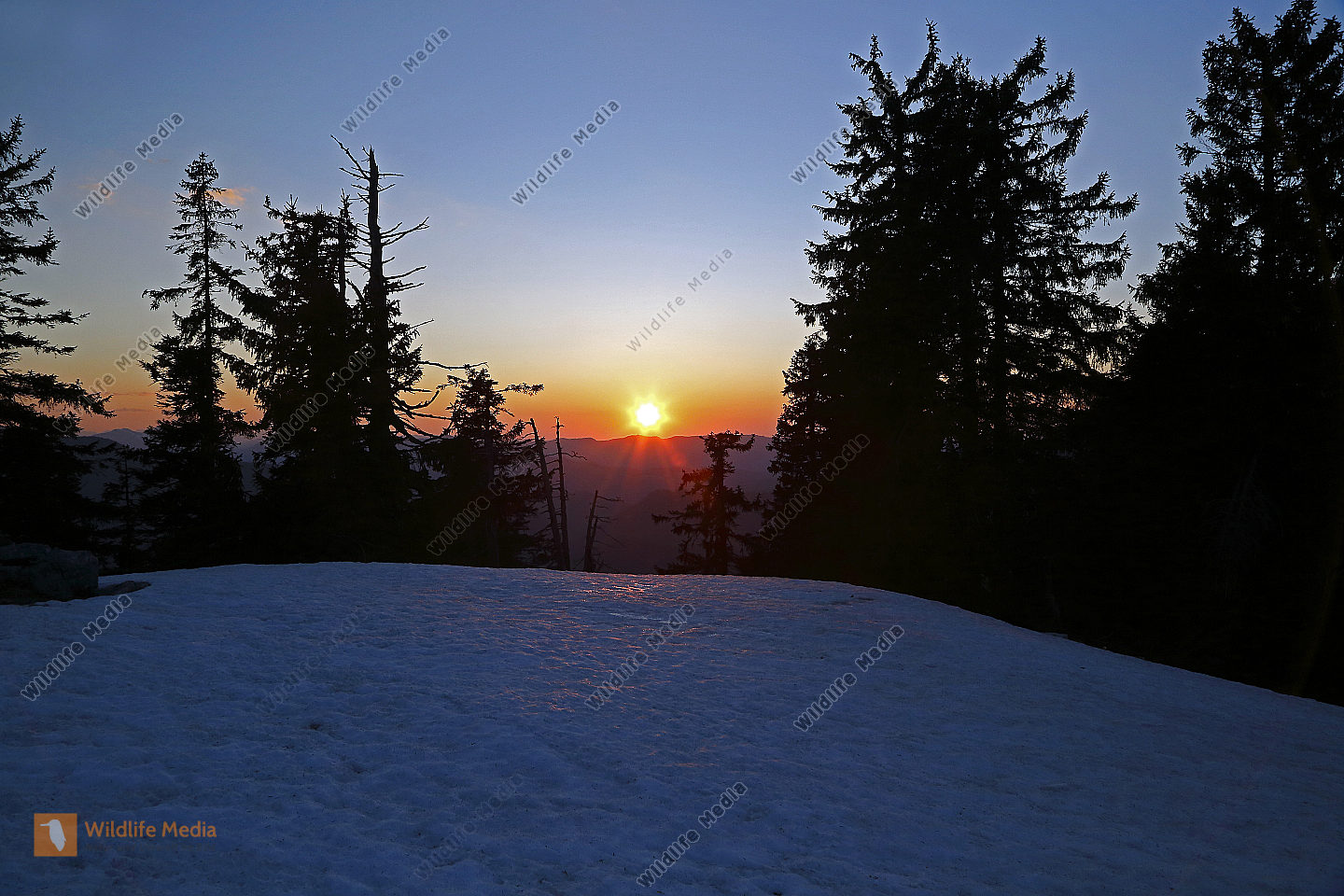 Sonnenuntergang am Dürrenstein