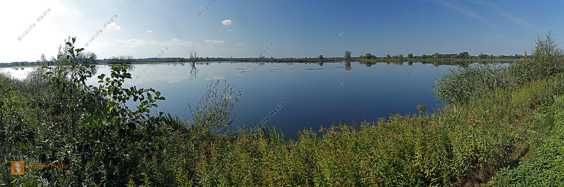 Nationalpark Seewinkel Panorama