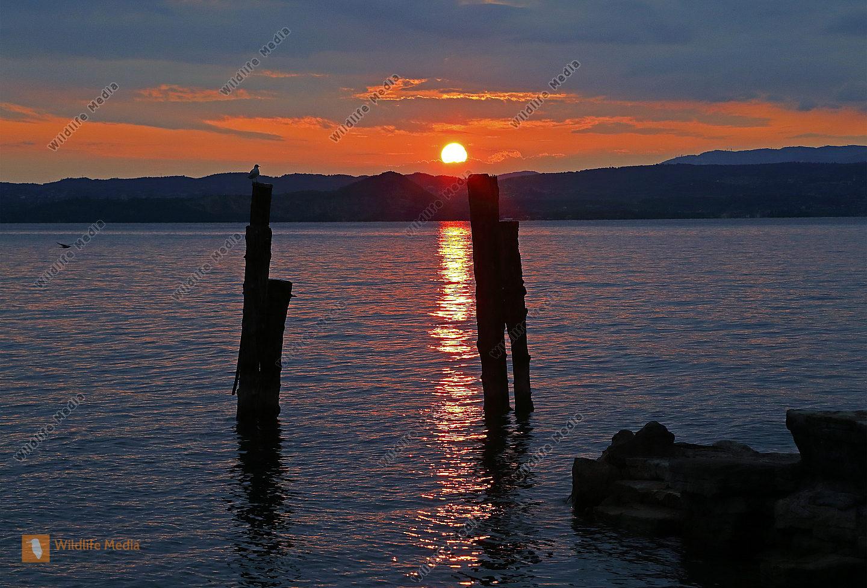 Gardasee bei Sonnenuntergang