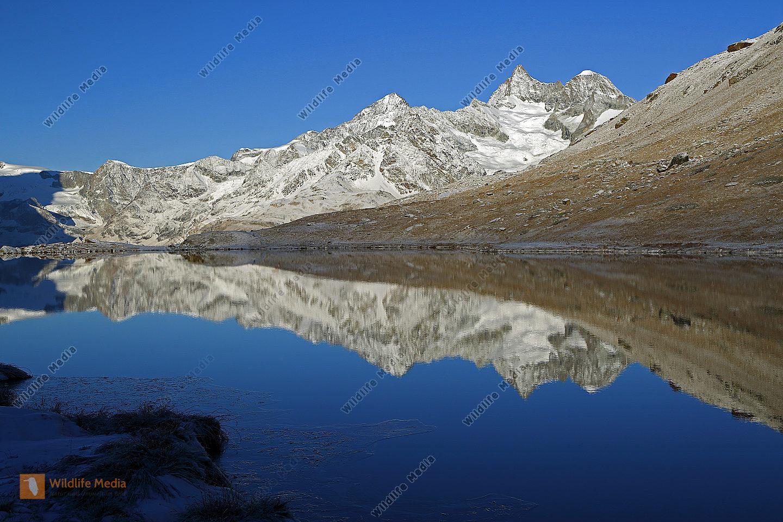 Stellisee mit Ober Gabelhorn und Wellenkuppe