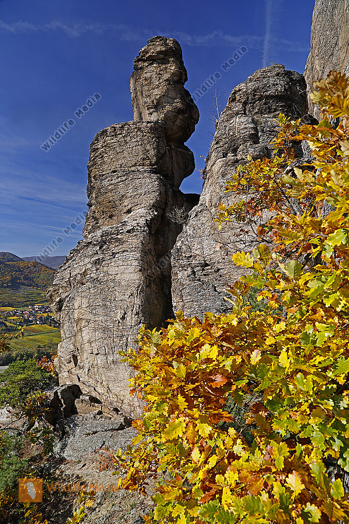 Felslandschaft Wachau im Herbst
