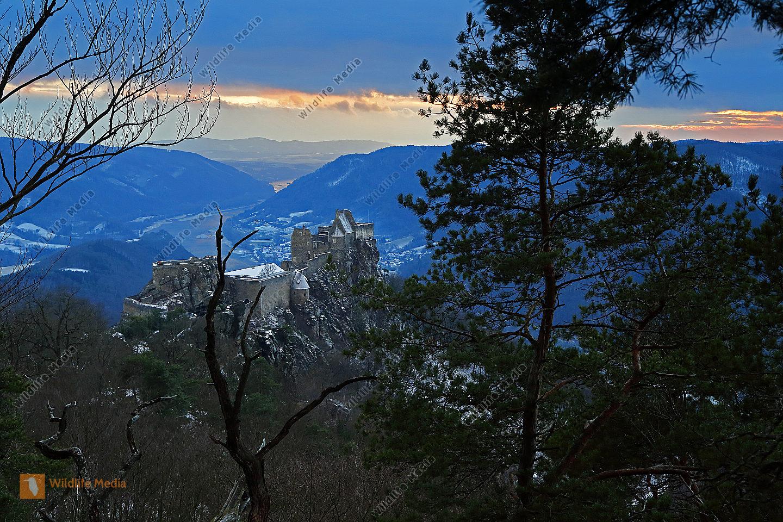 Burgruine Aggstein im Winter