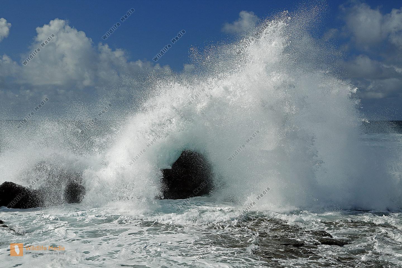 Brandung El Golfo