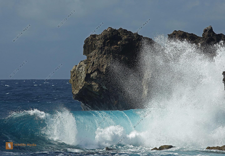 Wellen El Golfo
