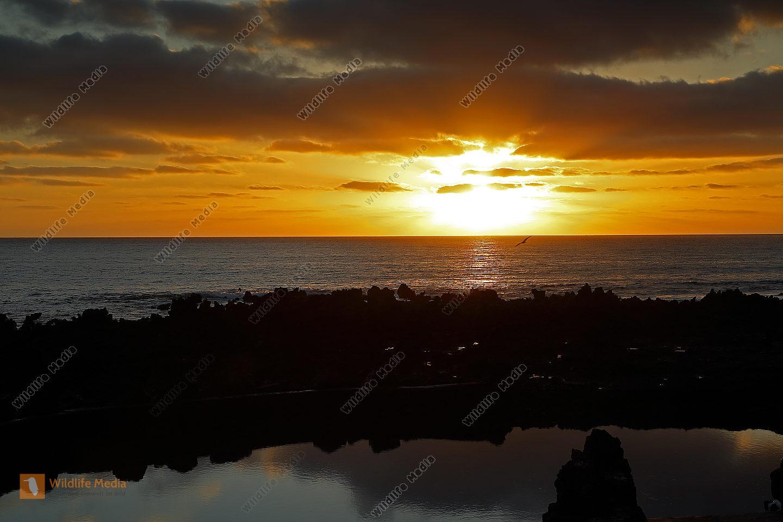 Sonnenaufgang Lanzarote