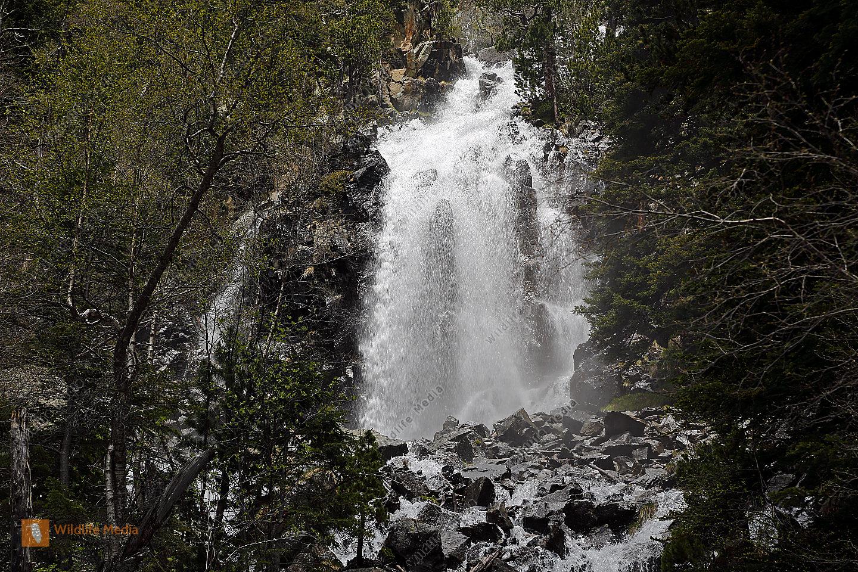 Wasserfall Nationalpark Aigüestortes i Estany de Sant Maurici