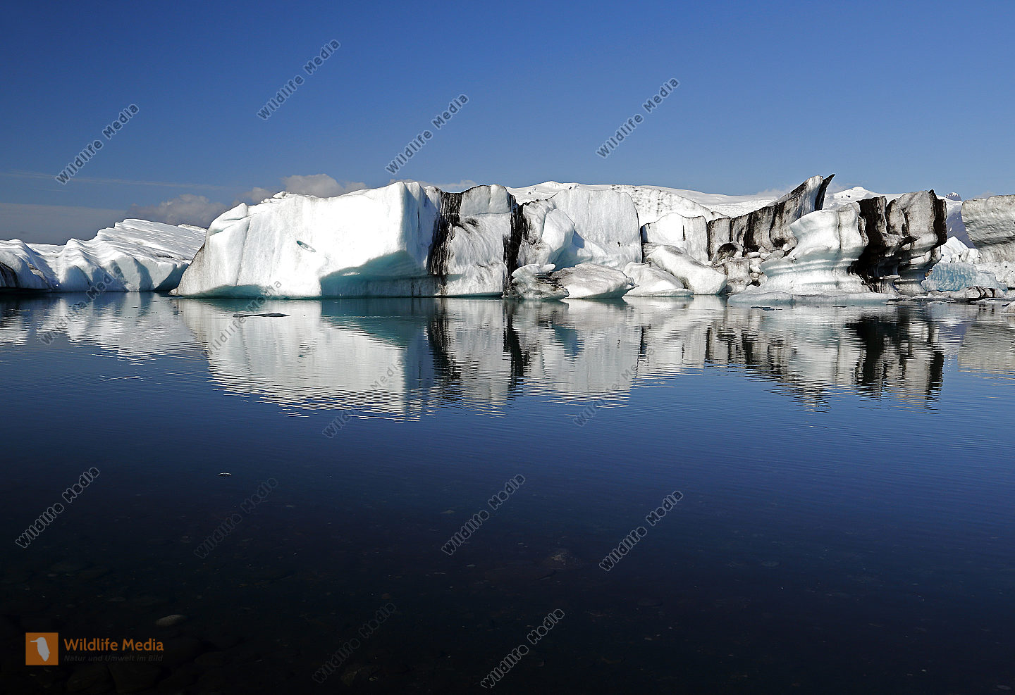 Jökulsárlón mit Eisbergen