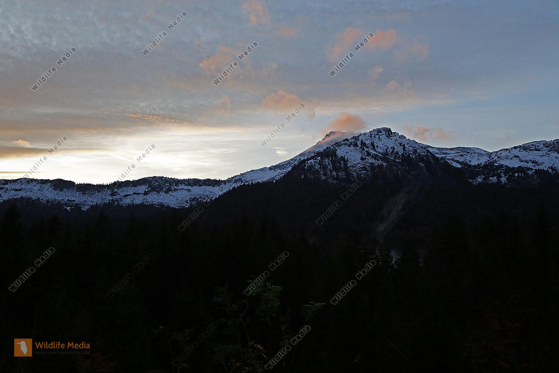Dürrenstein im Sonnenuntergang